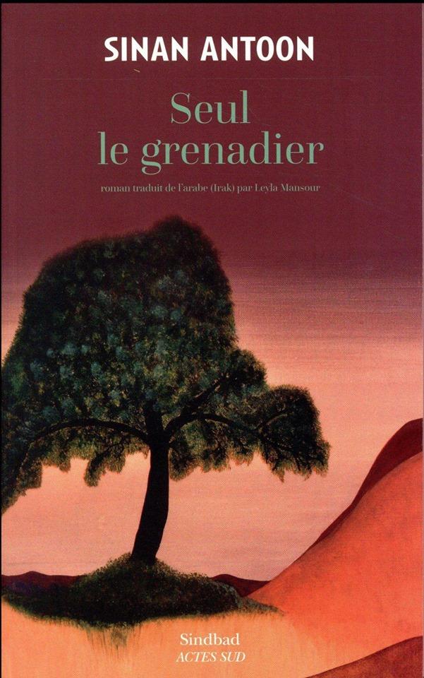Sinan Antoon vince la quinta edizione del Prix de la littérature arabe